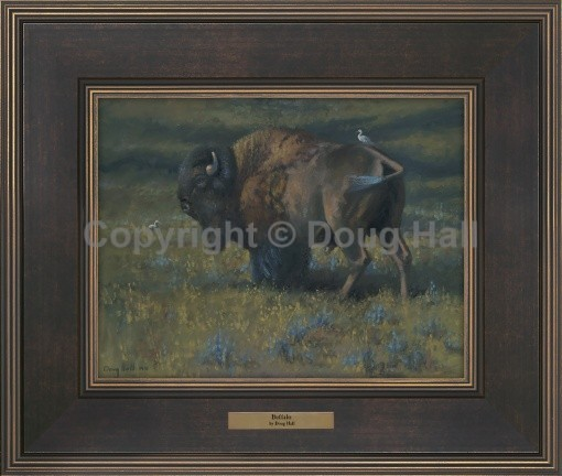 Buffalo by Doug Hall - 067 - 9x12 BR216 Framed
