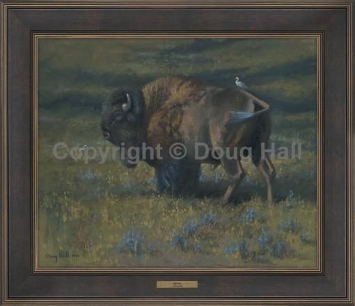 Buffalo by Doug Hall - 067 - 20x24 BR216 Framed